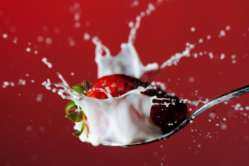 飞溅草莓的牛奶 免版税图库摄影