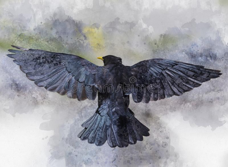 飞行乌鸦鸟的画象,水彩绘画 库存例证
