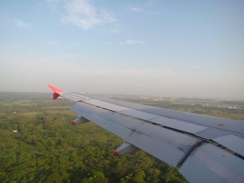 飞行乘飞机在密林附近 库存图片
