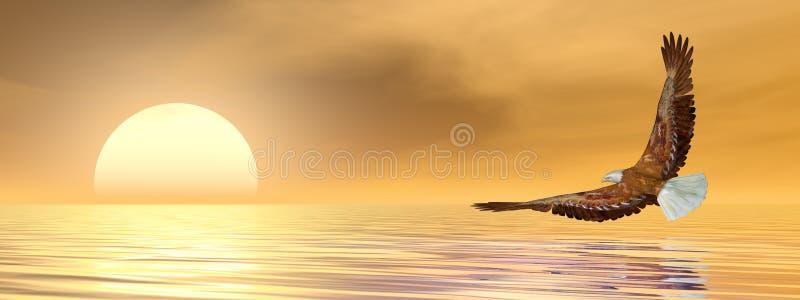 飞行到太阳的3D的老鹰回报 皇族释放例证