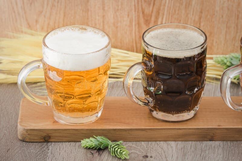 飞行啤酒 品尝的Berr 免版税库存照片