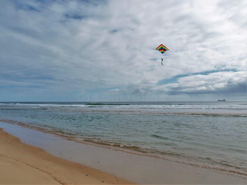 飞行在哈特拉斯角国民海滨的风筝 免版税库存图片