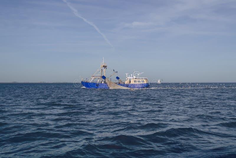 飞行在拖网渔船以后的海鸥在海 免版税图库摄影