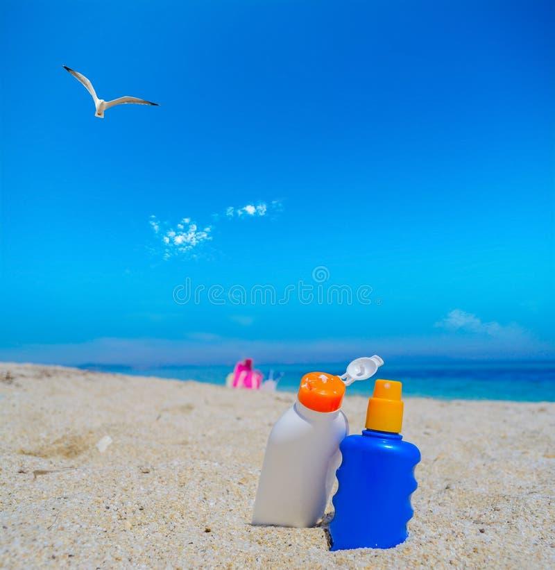 飞行在晒黑化妆水瓶的海鸥 库存图片