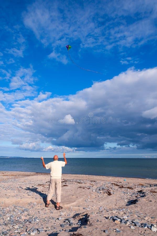 飞行在海滩的一只风筝 库存照片