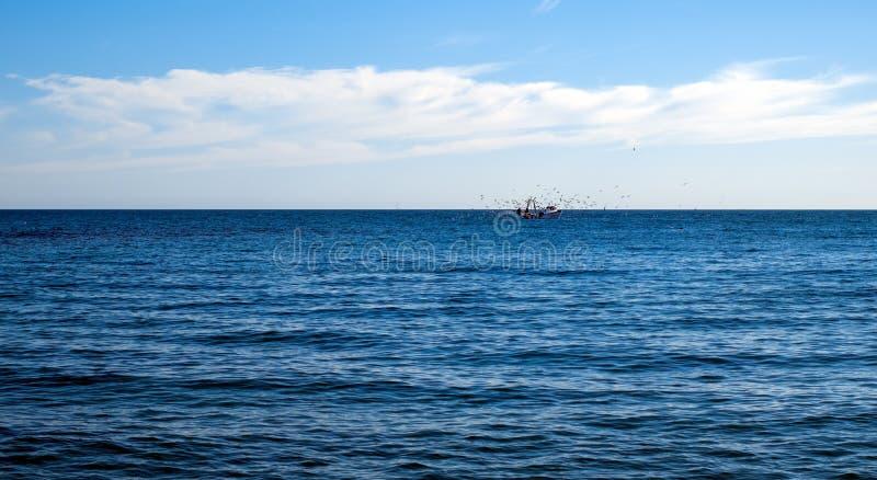飞行在渔船的海鸥 免版税库存照片