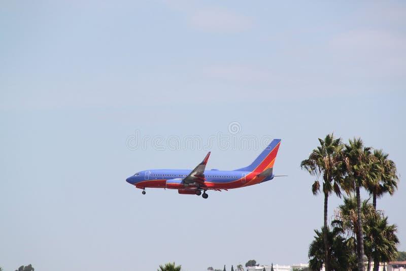 飞行在途中的树的飞机到登陆的圣地亚哥机场 图库摄影