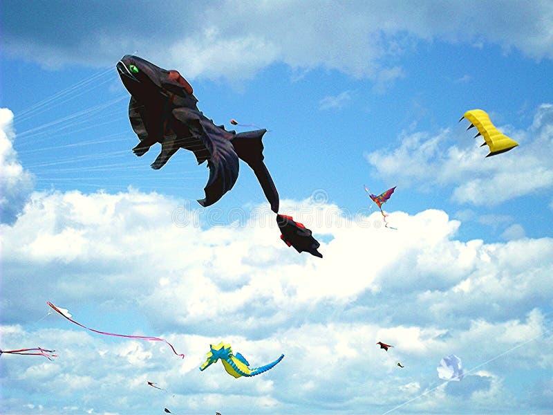 飞行在Montrose公园的风筝竞争在芝加哥 库存图片