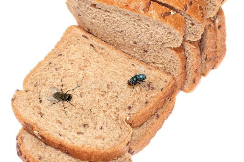 飞行坐切的面包 库存照片