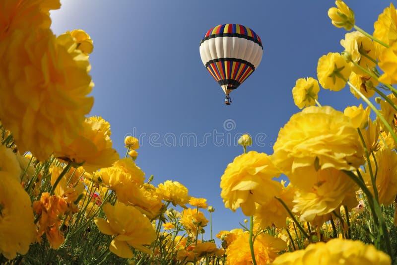 飞行多彩多姿的气球 图库摄影