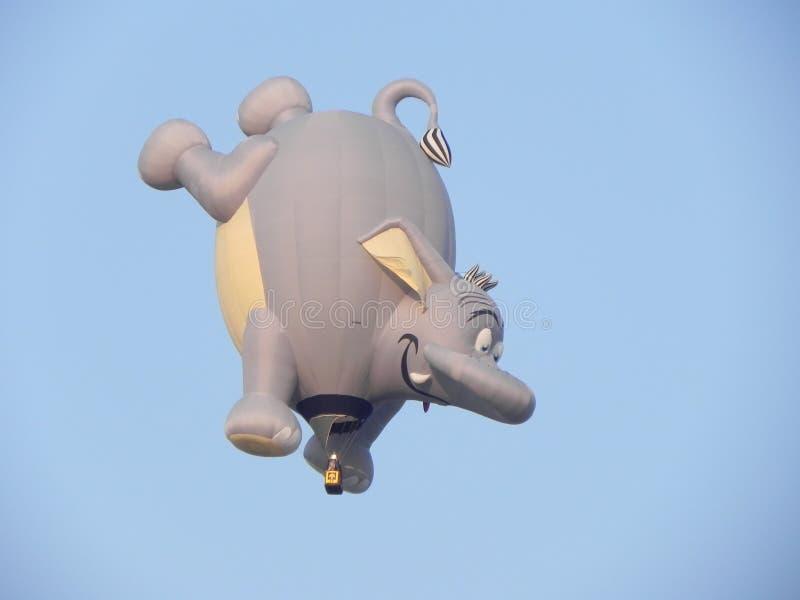 飞行大象 库存图片