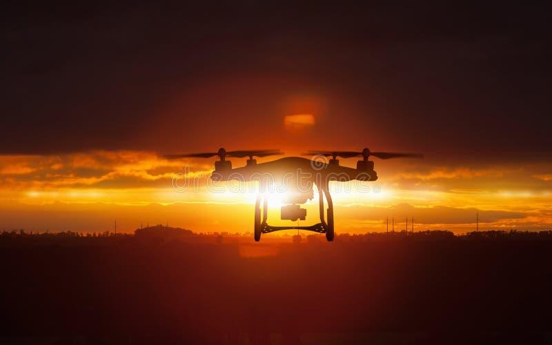 飞行寄生虫剪影在发光的红色日落天空的 免版税库存图片