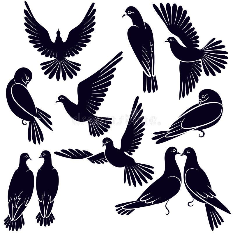 飞行并且坐鸽子的剪影  向量例证