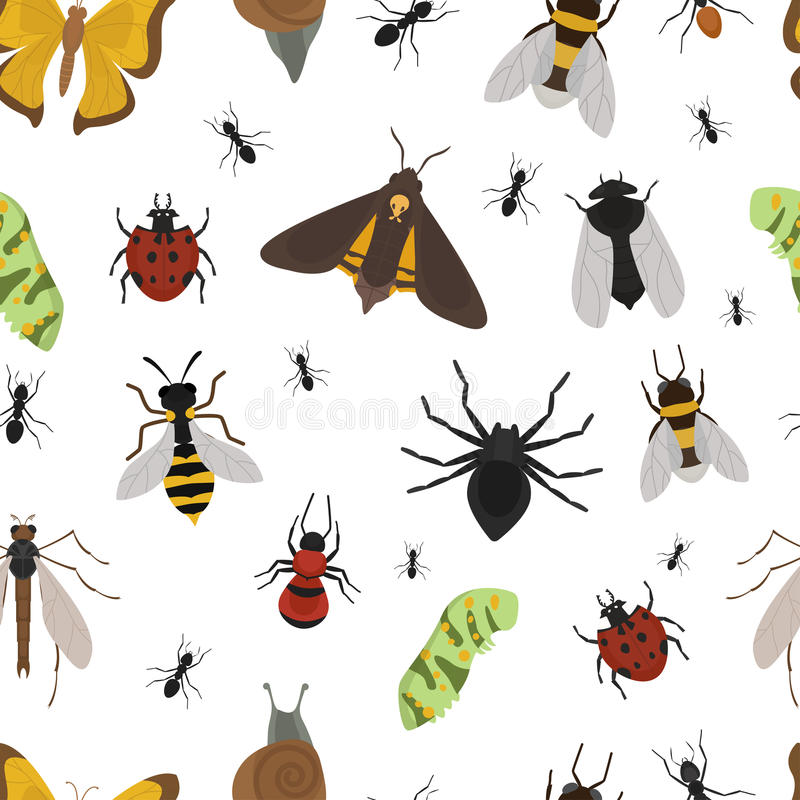 飞行昆虫野生生物昆虫学臭虫兽性甲虫生物蜂声象传染媒介无缝例证的样式 皇族释放例证