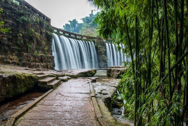 飞行瀑布在竹海域竹森林里  图库摄影