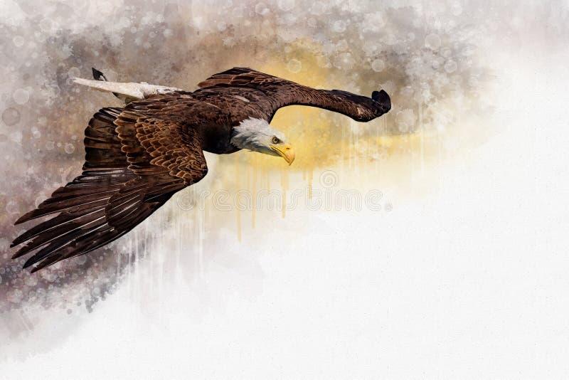 飞行的老鹰美国鸟,水彩绘画 标志掠食性动物 鸟例证 库存例证