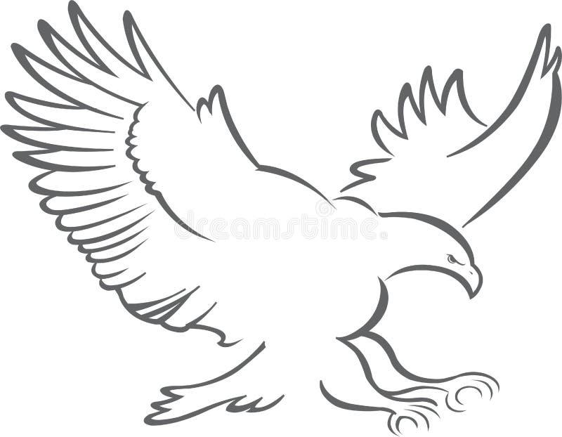 飞行老鹰概述与翼展传播的 库存例证