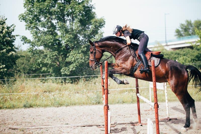 飞跃障碍的马的年轻女性骑师 免版税库存图片