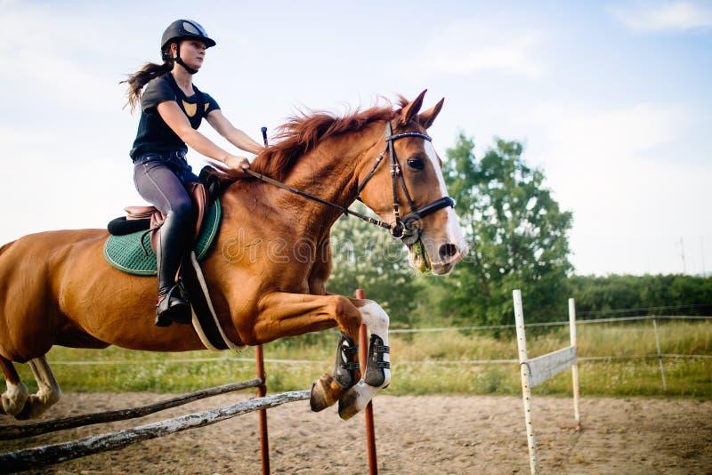 飞跃障碍的马的年轻女性骑师 图库摄影