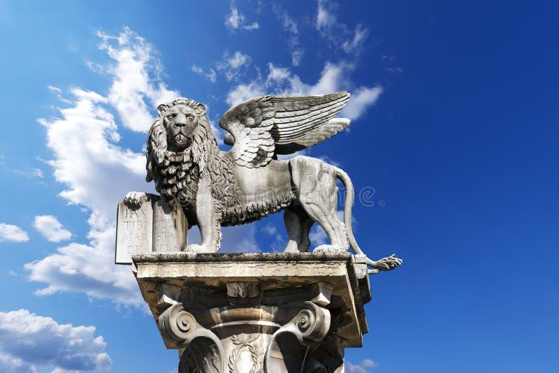 飞过的圣马克狮子在维罗纳-意大利 免版税库存照片
