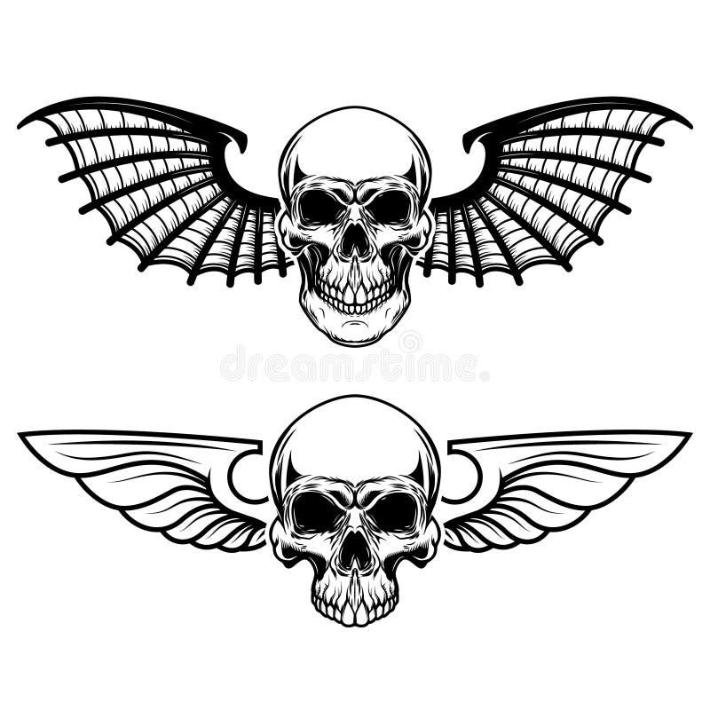 飞过的头盖骨的套 有棒翼的头骨 皇族释放例证