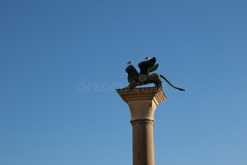 飞过的狮子雕象在圣马可广场,威尼斯,意大利 库存图片
