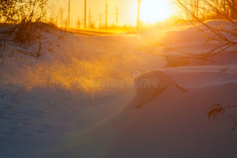 飞雪冬天 图库摄影