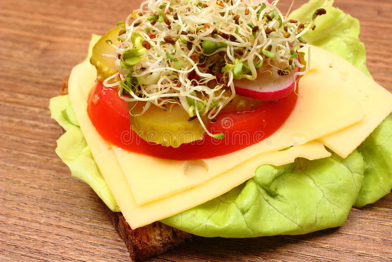 Download 素食三明治用紫花苜蓿和萝卜新芽 库存图片. 图片 包括有 蕃茄, 巴西, 食物, 表面, 生活方式, 蔬菜 - 59110965