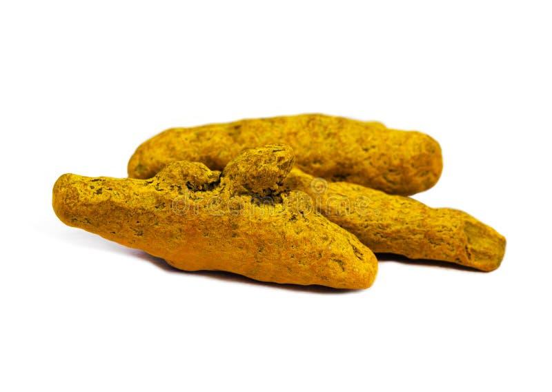 食品成分-姜黄根 图库摄影
