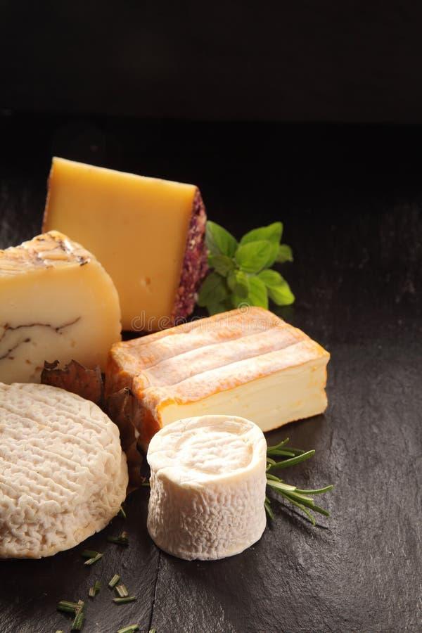 食家乳酪品种用新鲜的草本 免版税库存照片