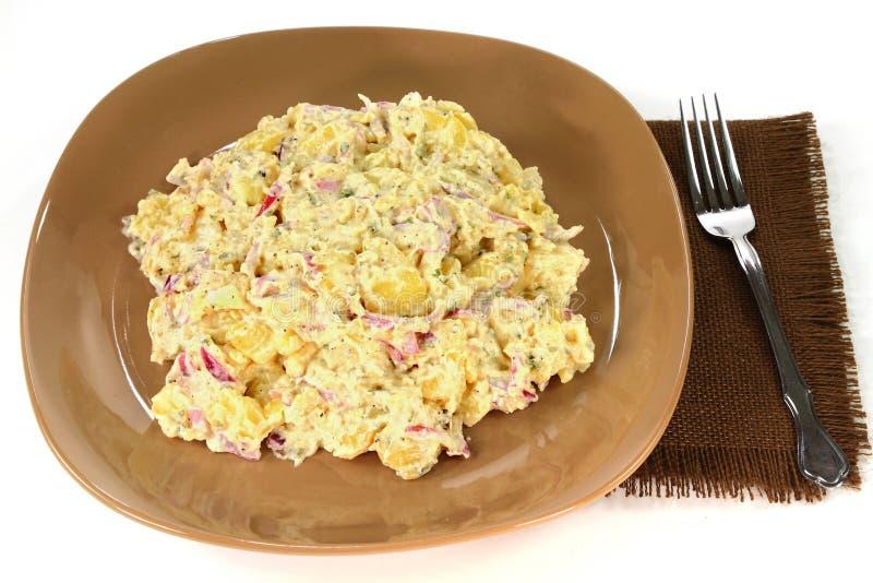 食家土豆葱沙拉和蛋黄酱 免版税库存图片