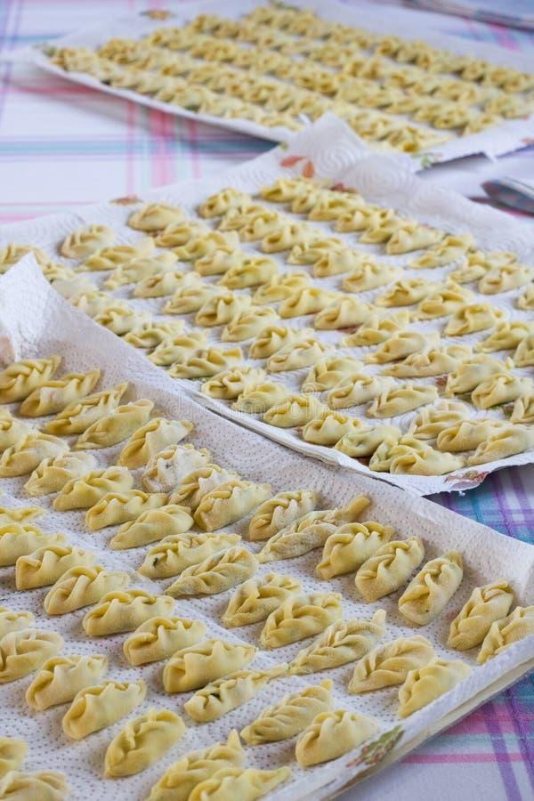 素食意大利tortelli盘子,垂直 库存照片