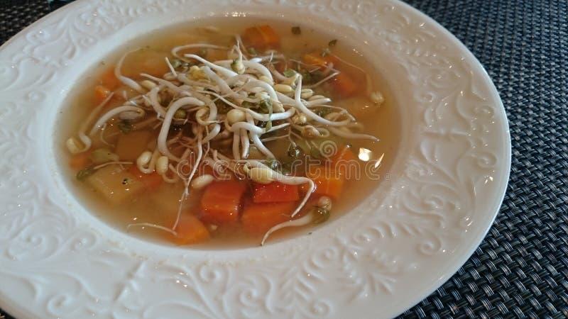 素食汤 库存图片