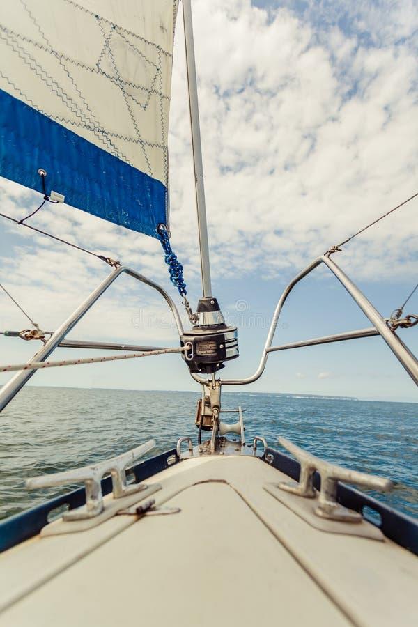 食流体食物动物热那亚路辗三角帆,在小船的jibsheet 免版税库存图片