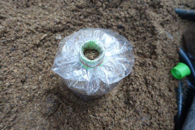 食物为被传染的蘑菇袋子做准备 库存照片