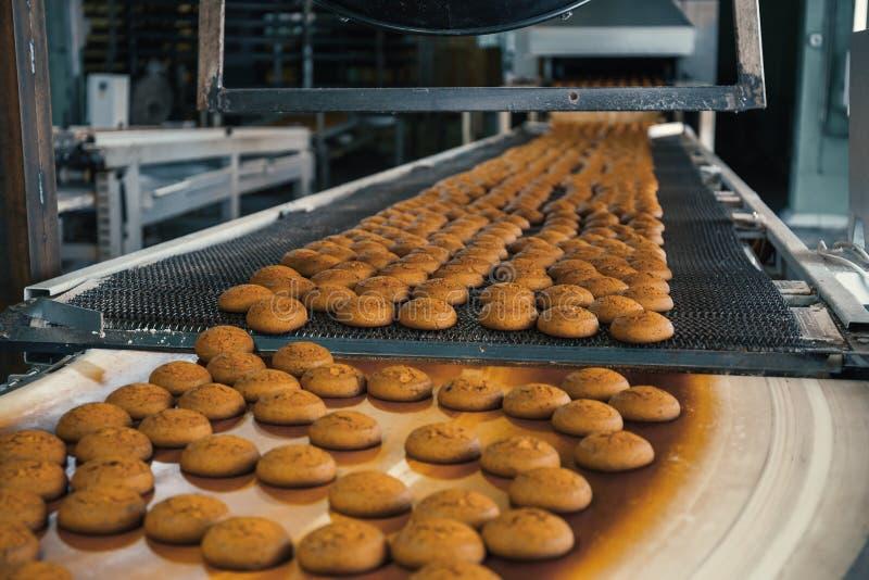 食物工厂、生产线或者传送带用新鲜的被烘烤的曲奇饼 现代自动化的糖果店和面包店 免版税图库摄影