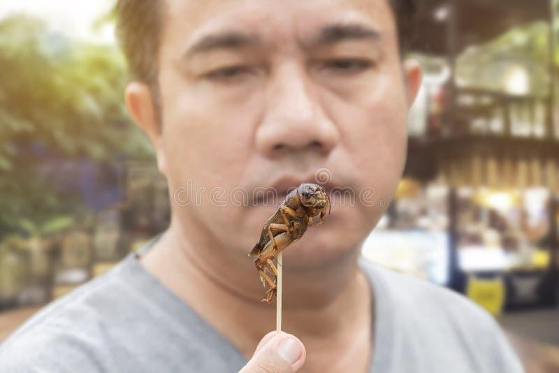 食物昆虫:在木串的食人的蟋蟀昆虫 蟋蟀油炸了酥脆为吃当食物快餐,这是好来源  免版税库存照片
