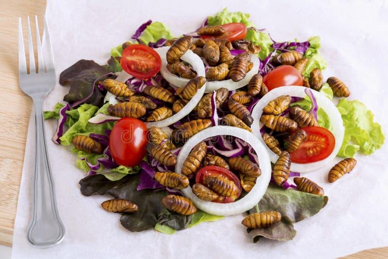 食物昆虫:油煎的蠕虫昆虫或蝶蛹桑蚕吃的当食品项目在沙拉菜在木背景,是好 图库摄影