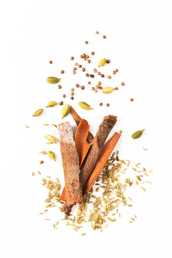 食物概念分类东方人加香料豆蔻果实荚,芫荽子,茴香,并且桂香桂皮在白色背景的棍子 免版税图库摄影