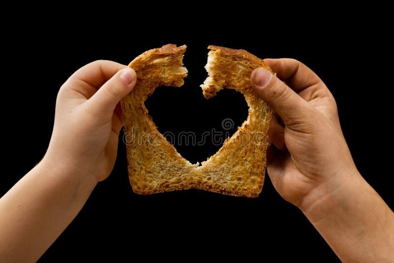 食物爱共享 库存照片