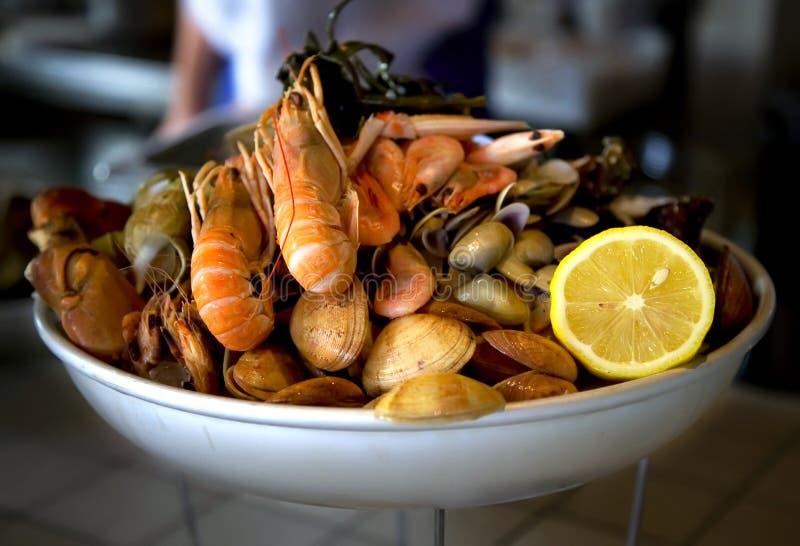 食物牌照海运 库存图片