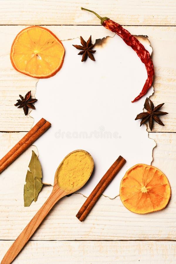 食物艺术概念 木匙子用姜黄,桂香,茴香担任主角 免版税图库摄影