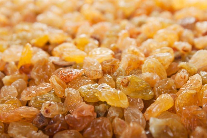 食物葡萄干 免版税图库摄影