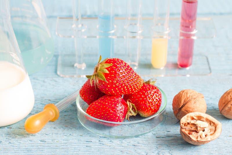 食物过敏和研究在实验室里 库存图片