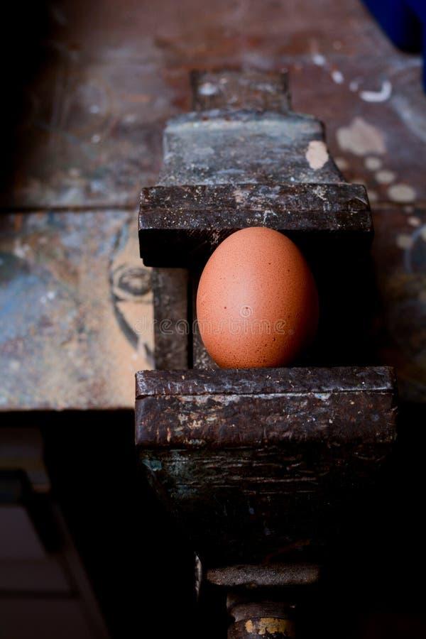 食物隐喻、力量和能量从健康食品 免版税库存照片