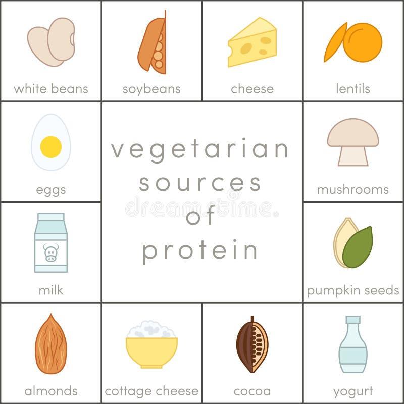 素食蛋白质来源 库存例证