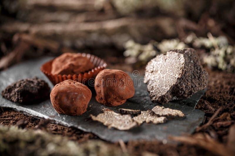 素食主义者块菌状巧克力 库存图片