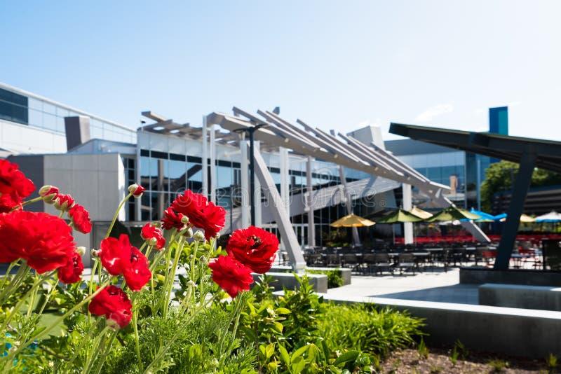 餐馆在Googleplex -谷歌总部 图库摄影