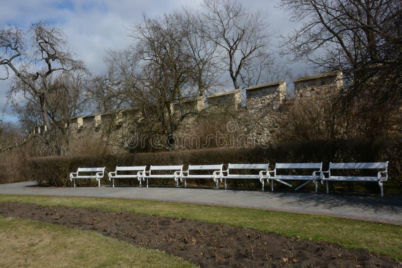 饥饿的墙壁和公园有长凳的在布拉格Petrin的 图库摄影