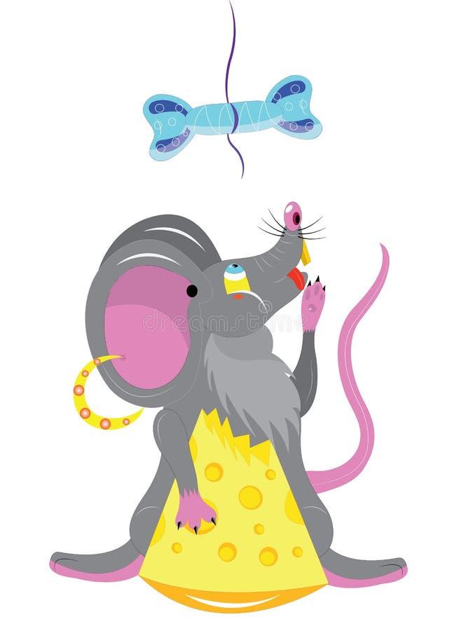 饥饿的老鼠。 免版税库存照片